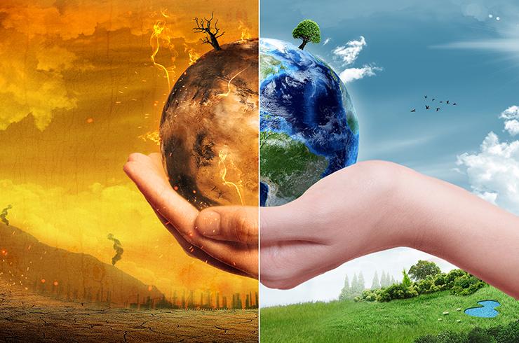 Aquecimento Global vai estimular crescimento de insetos e pragas, diz estudo