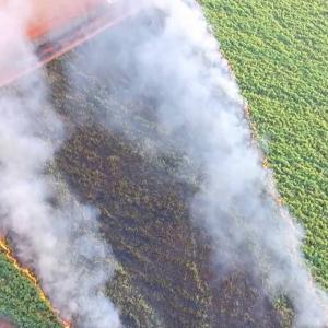 Incêndio na lavoura, como prevenir?