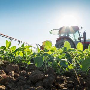NUFARM comercializa fungicida para controle do mofo-branco em soja
