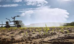 BRASIL PRETENDE AUMENTAR POTENCIAL DA AGRICULTURA IRRIGADA